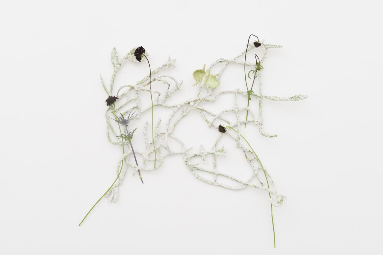 ASMA, Blossoming Carcass, 2019