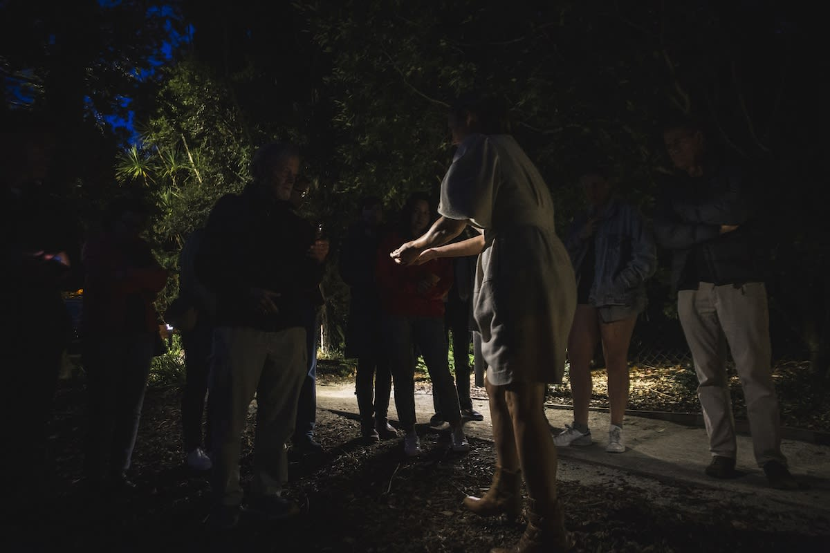 Mamakan and guests going for a night foraging walk outside Te Uru Contemporary Gallery in Titirangi.
