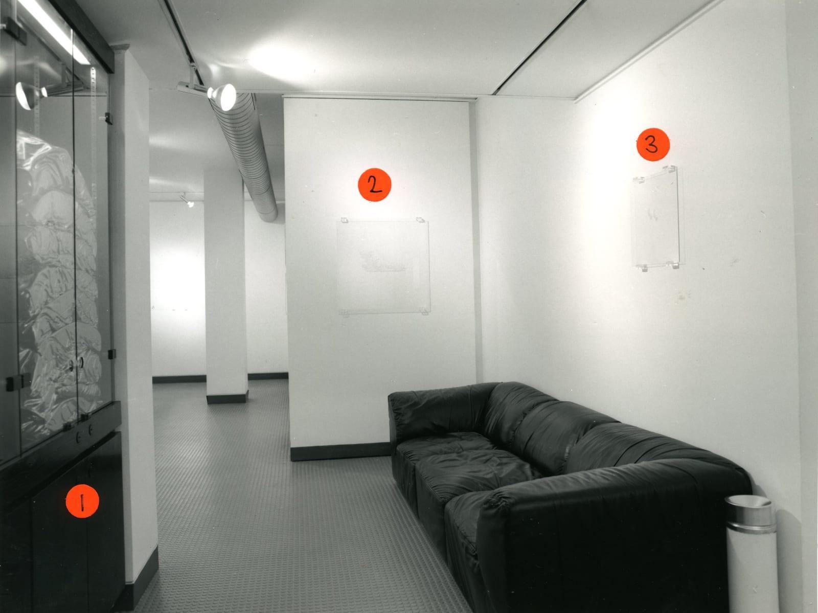 JANE MULFINGER Installation View