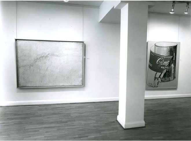 U.S.A. Installation View