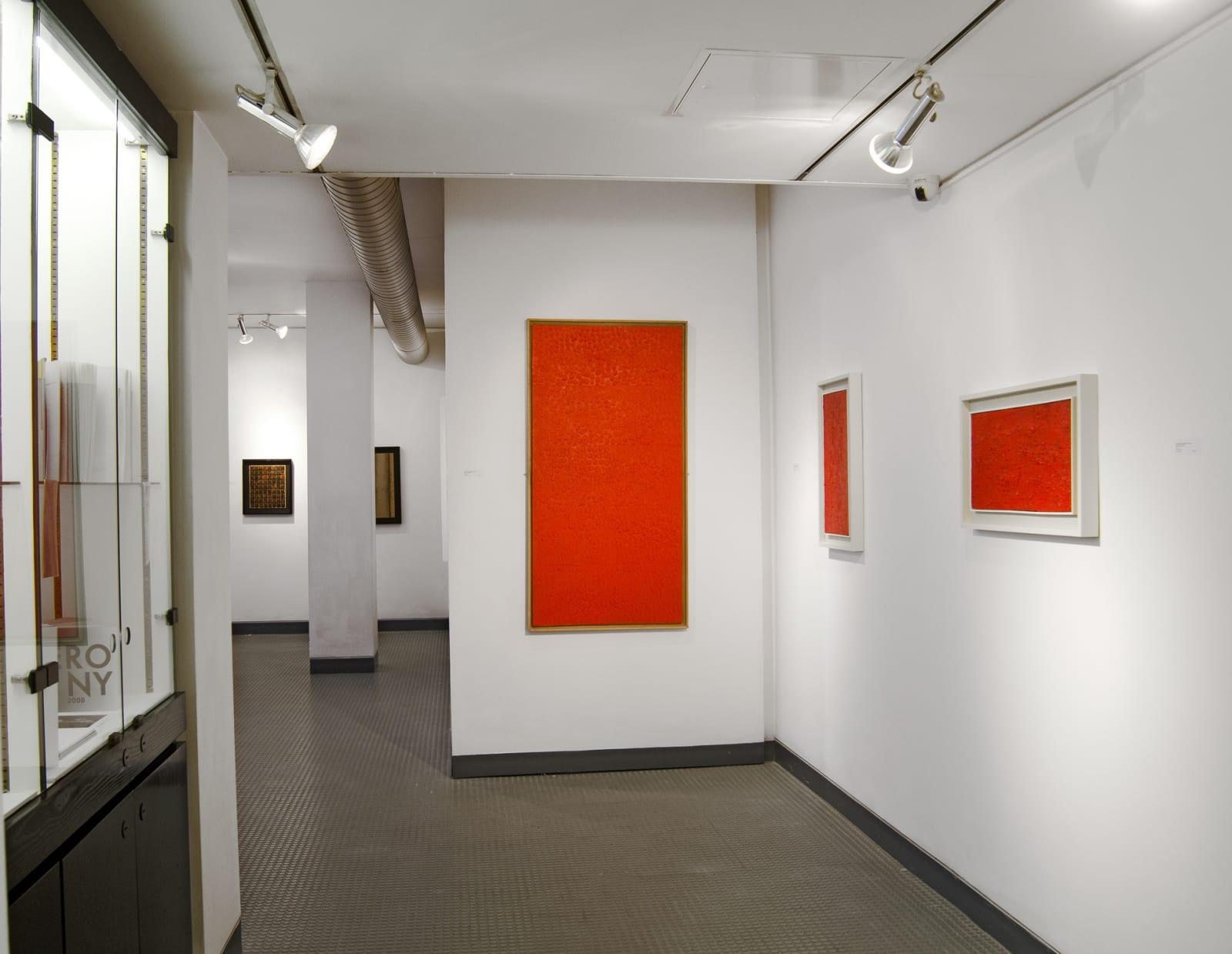 BERNARD AUBERTIN Installation View