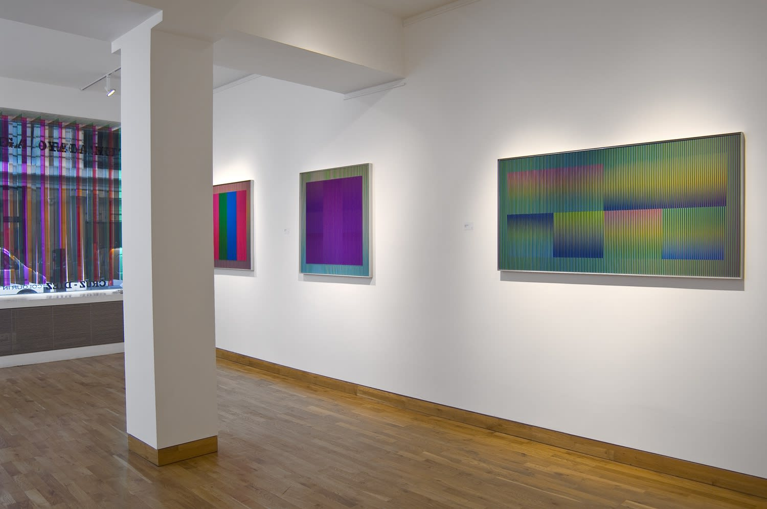 CARLOS CRUZ-DIEZ Installation View