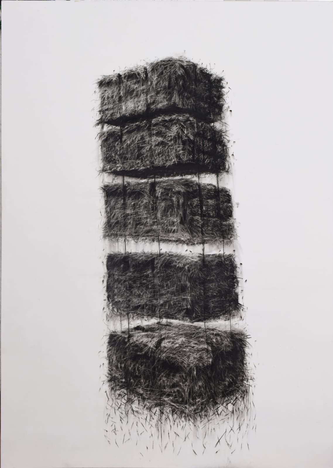 Siega 4, 2018 Charcoal on paper 78 7/10 × 59 1/10 in 200 × 150 cm