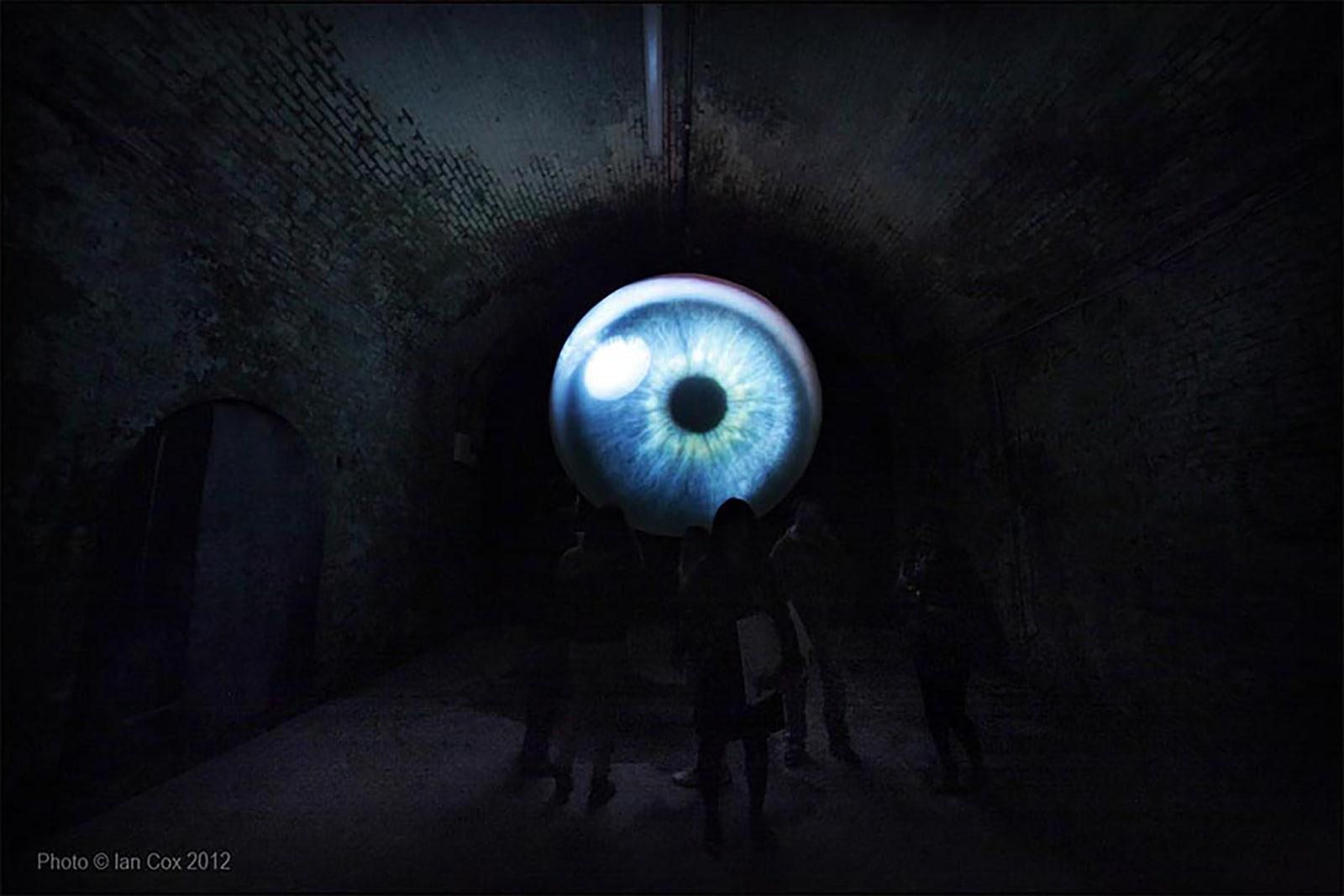 Lidless, 2012 High-definition video recorded via a slit lamp 118 1/10 in diameter 300 cm diameter