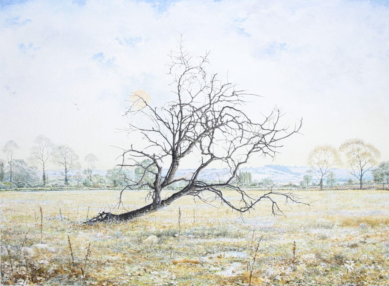 Robert Bates Apple Tree Watercolour 20 x 27.2 cm