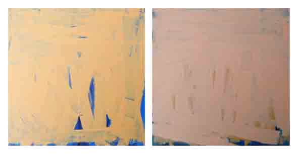 Bridget O'Rourke Skin orange and pink Oil on wood, diptych Each 30 x 30 cm