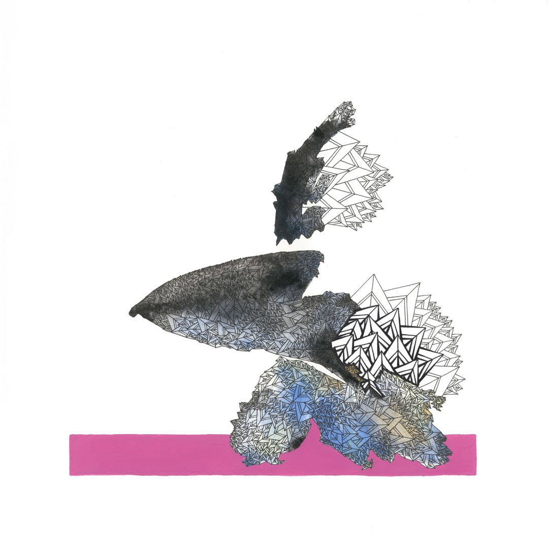 Brendon Marczan Pink robin Pen & ink on paper 30 x 30 cm