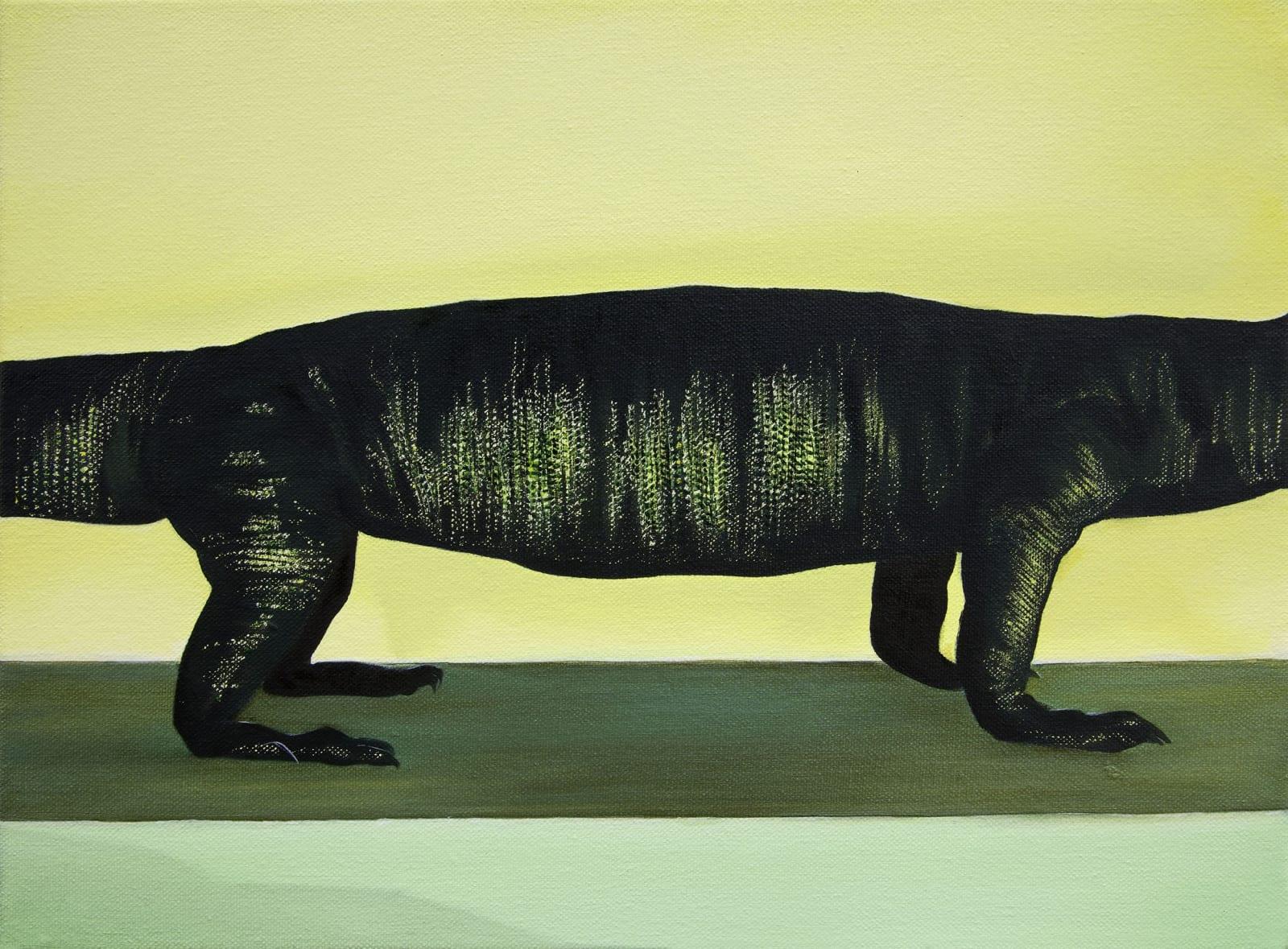 Bennie Reilly Mid-Lizard Oil on canvas 30 x 40cm
