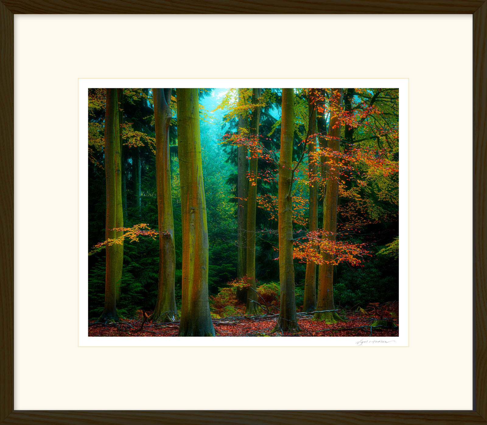 'AUTUMN COLOUR SPLASH' Archival Pigment Print on Platinum Etching Fine Art Paper. Framed in an Oiled Walnut Cushion Frame and protected with crystal clear Water White Glass. Available in an edition of 3 in three sizes. Prices from £245.00 including first class courier delivery within five working days.