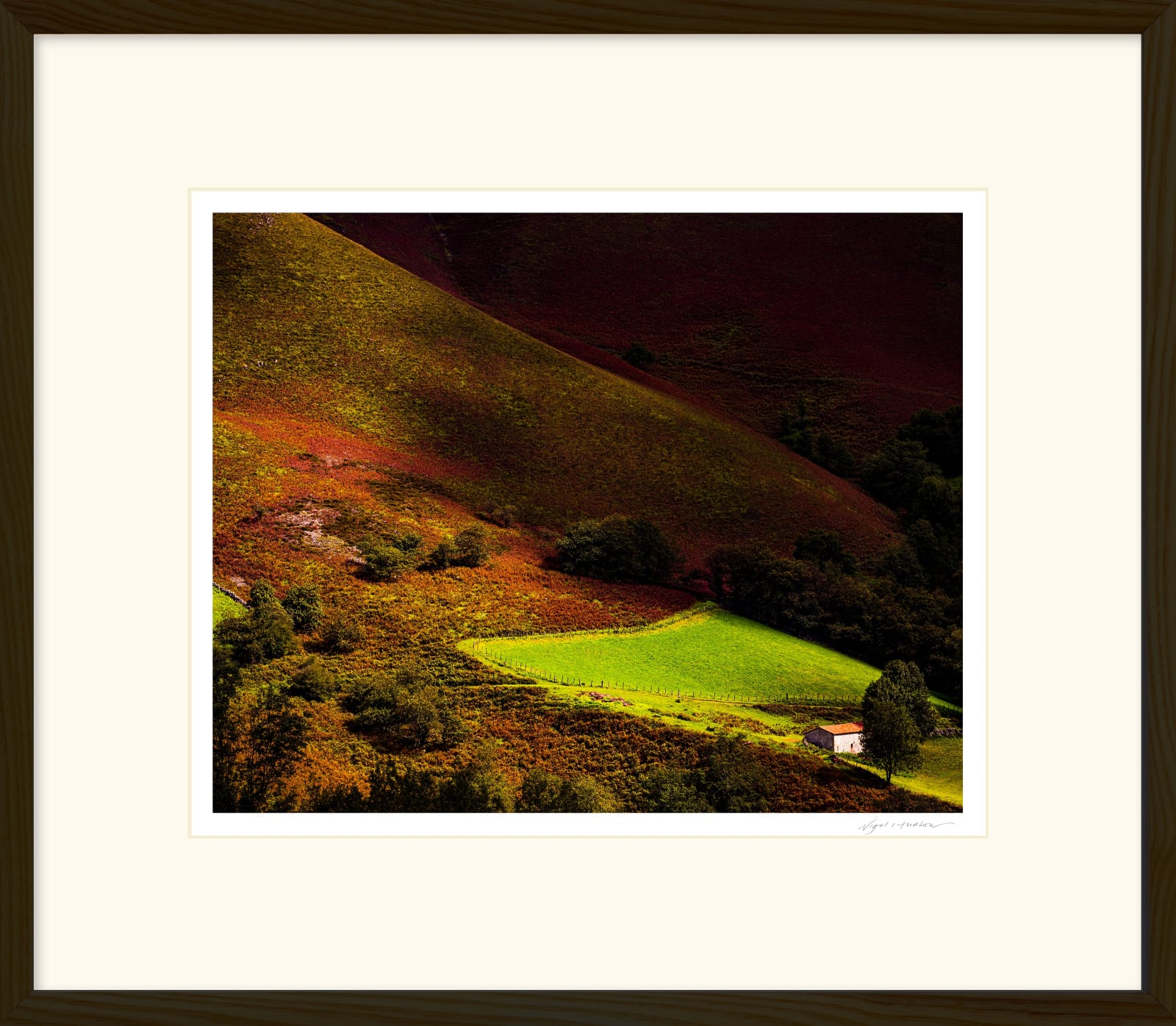 'EMERALD ENCLOSURE' Archival Pigment Print on Platinum Etching Fine Art Paper. Framed in an Oiled Walnut Cushion Frame and protected with crystal clear Water White Glass. Available in an edition of 3 in three sizes. Prices from £245.00 including first class courier delivery within five working days.