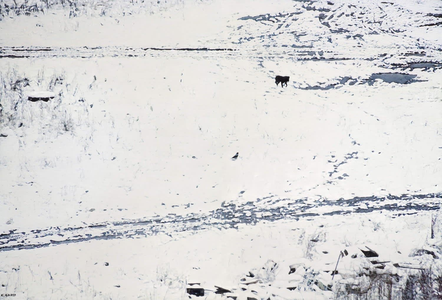 Semyon Faibisovich On the First Snow from the cycle Dog's life, 2012
