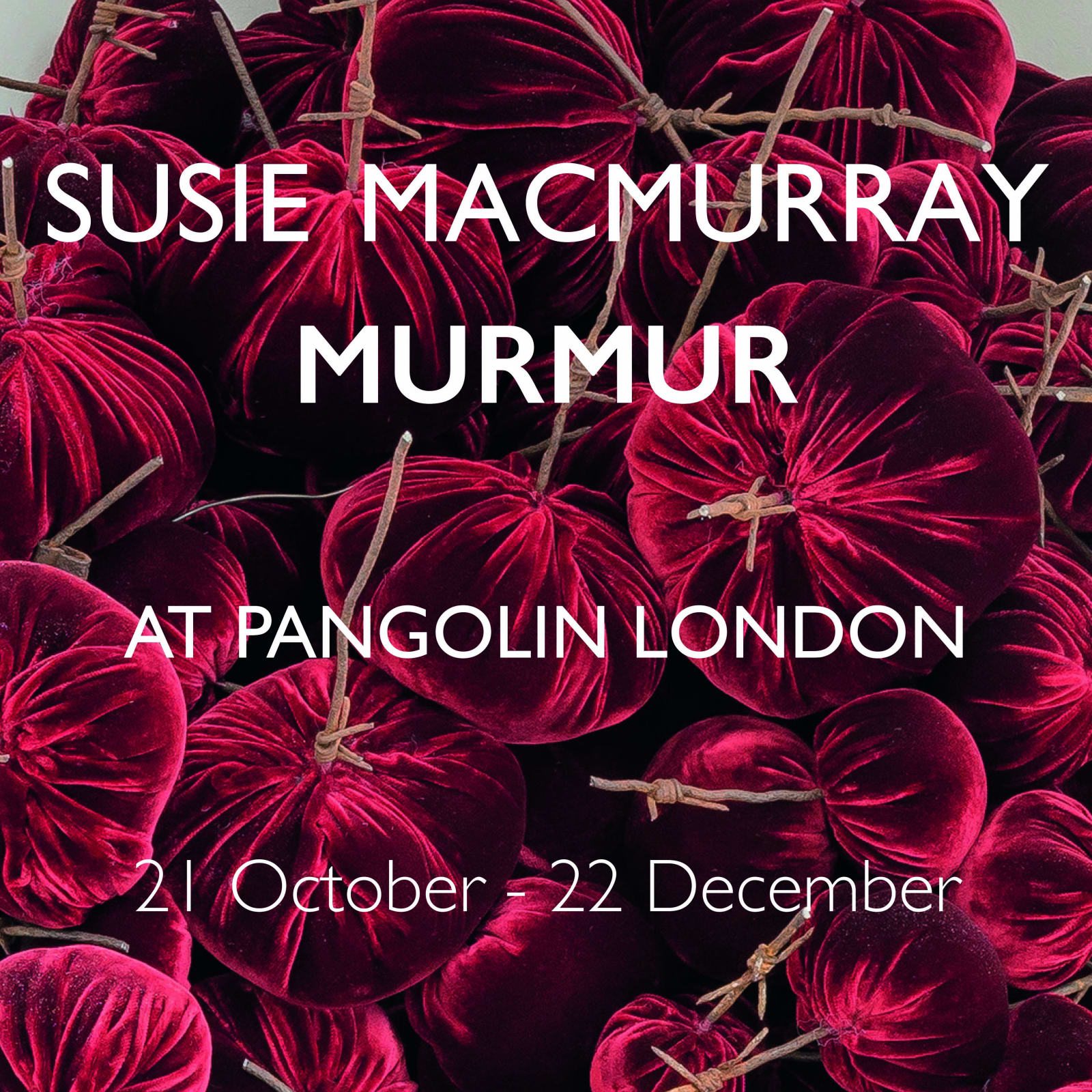Watch a short film about our current exhibition 'Murmur' by Susie MacMurray. Available on the exhibition page.