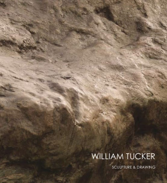 William Tucker Sculpture and Drawings
