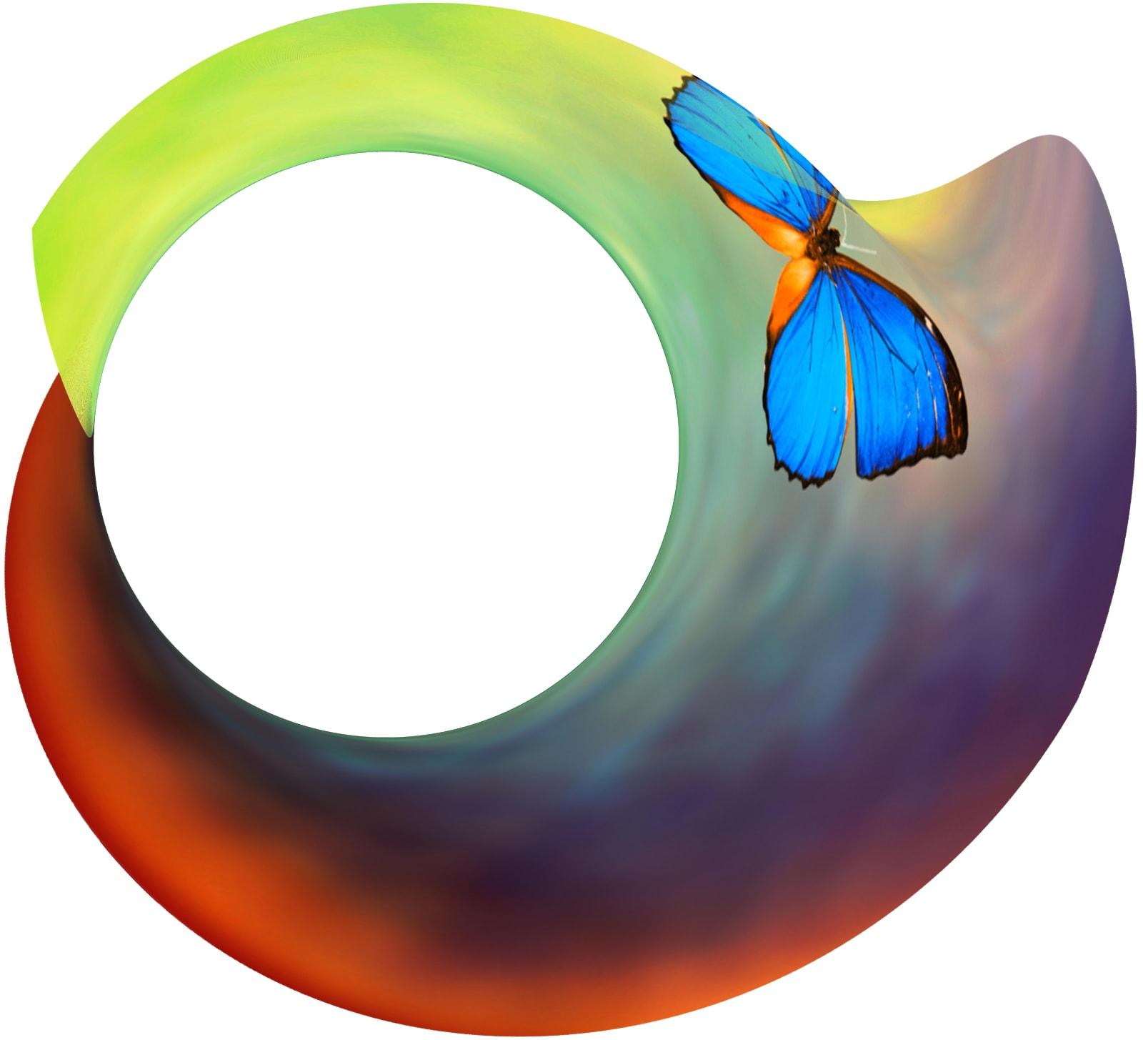 Butterfly Drift, 2021