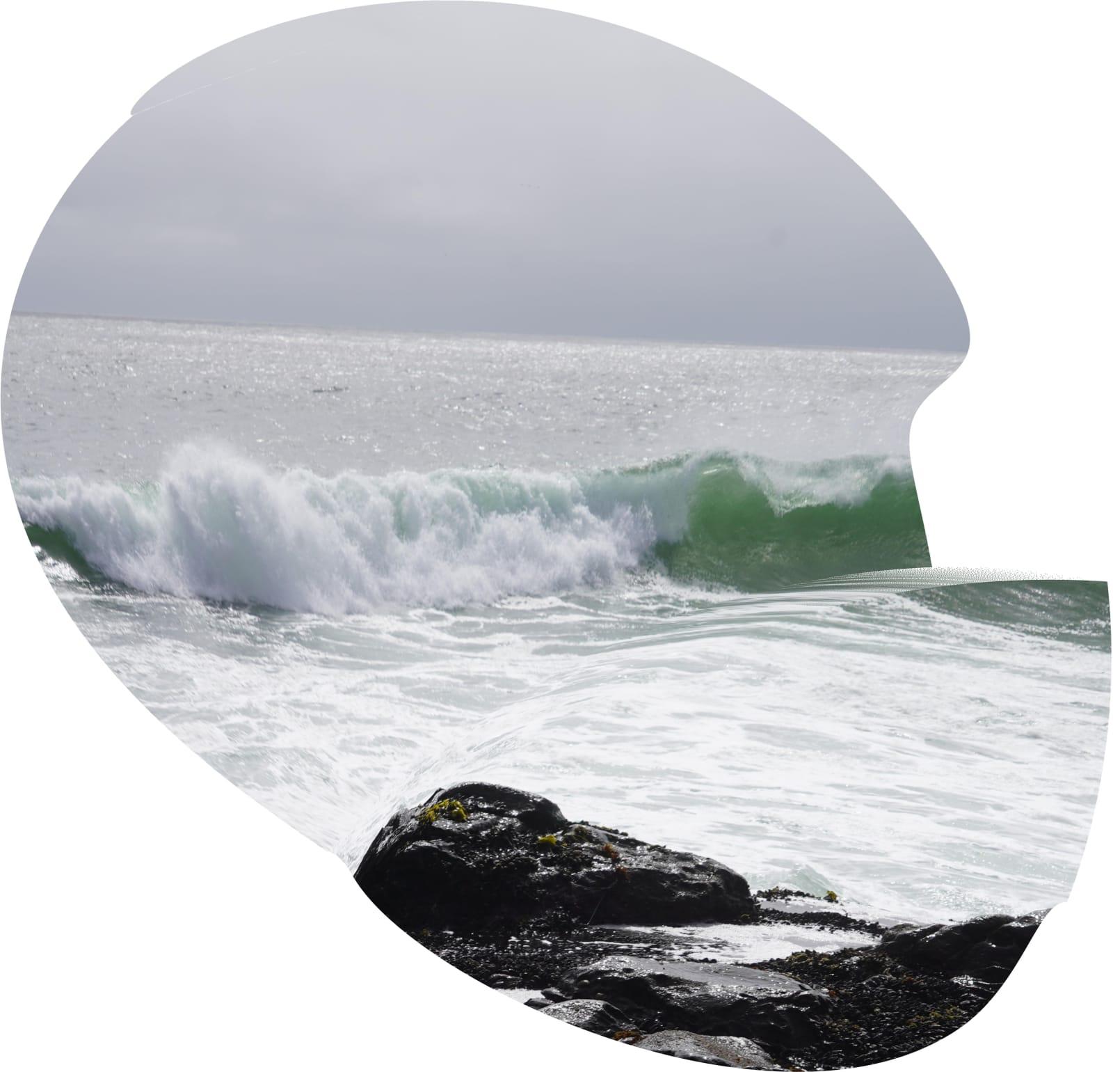 Green Curves, 2021