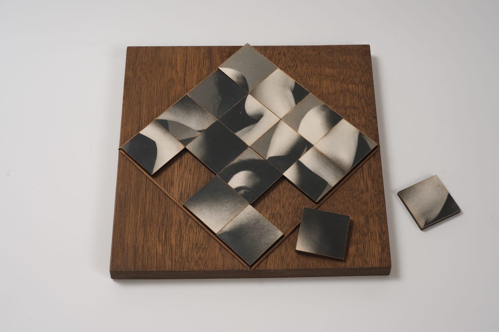 Robert Heinecken, Multiple Solution Puzzle