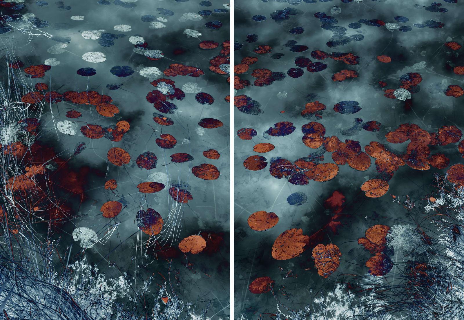 Santeri Tuori Water Lilies 18 2019