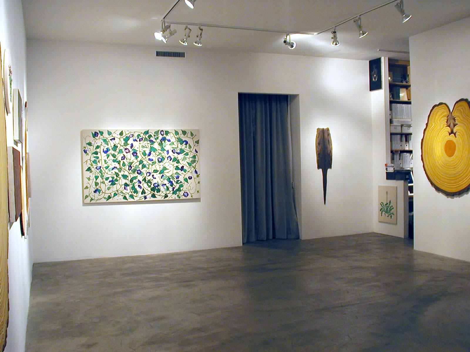 Matt Offenbacher | New Paintings