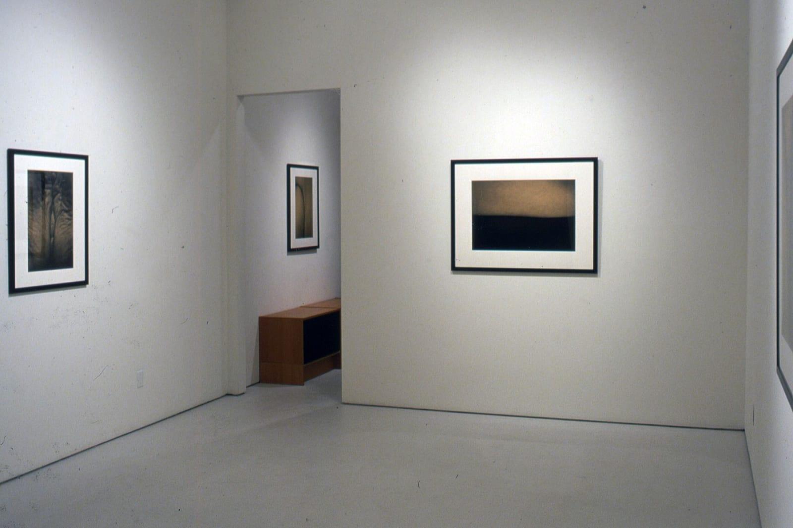 Han Nguyen   New Photographs