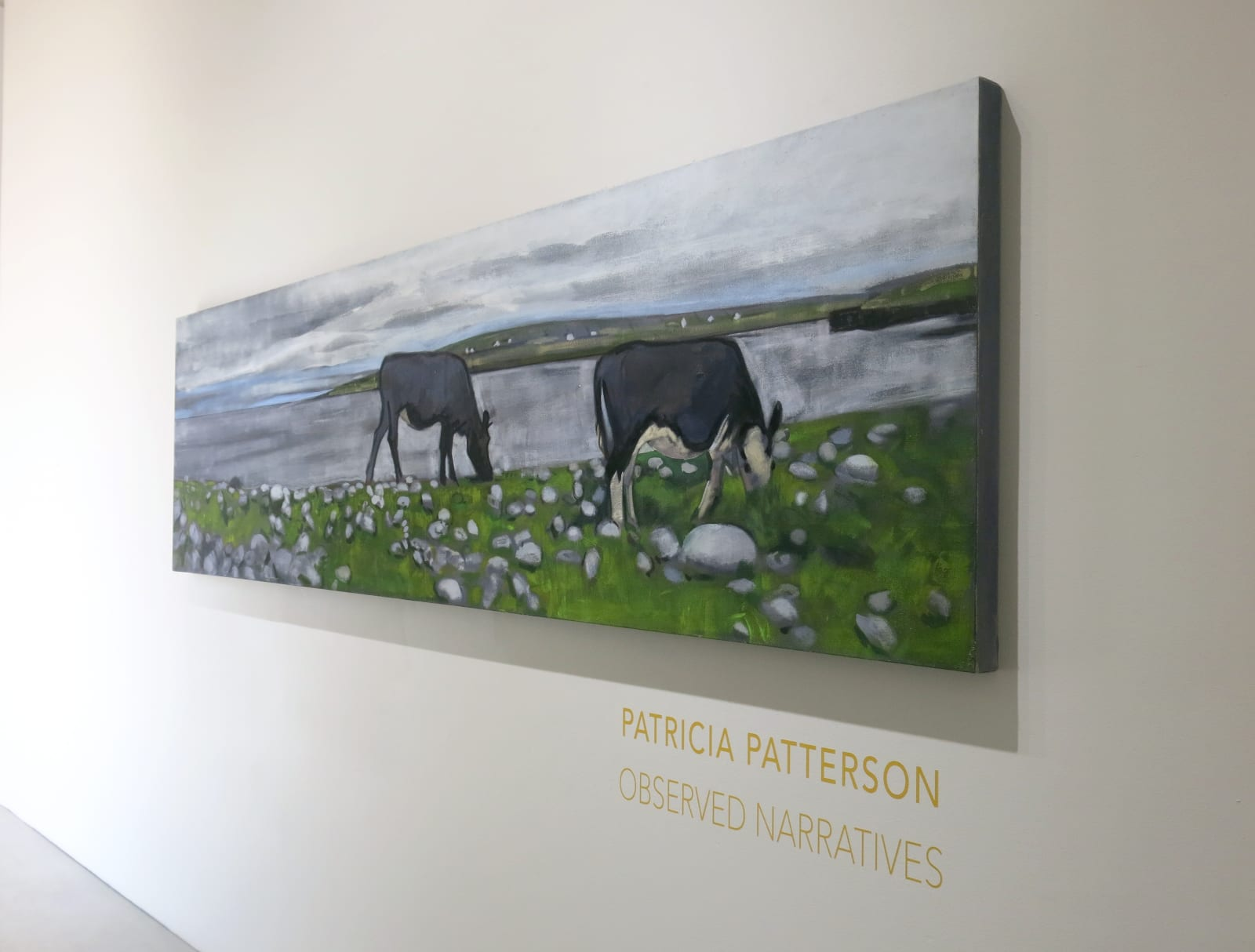 Patricia Patterson | Observed Narratives