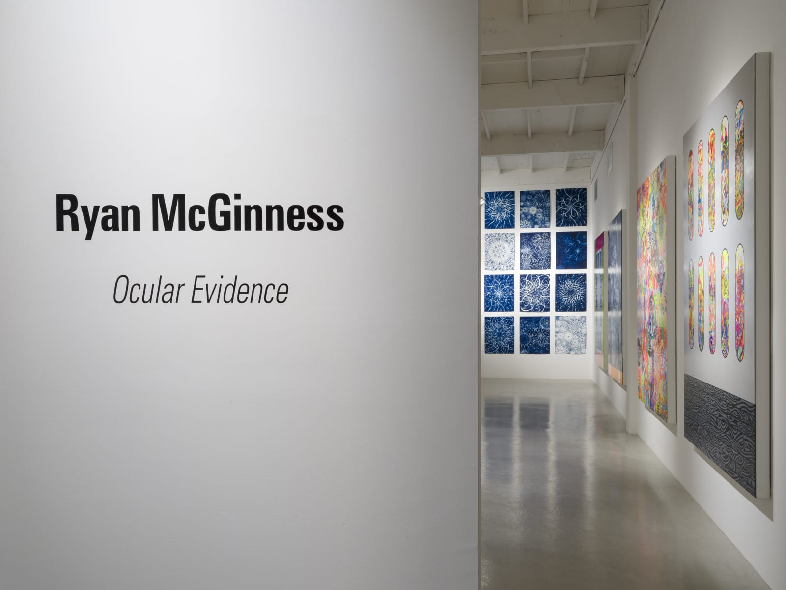 Ryan McGinness   Ocular Evidence