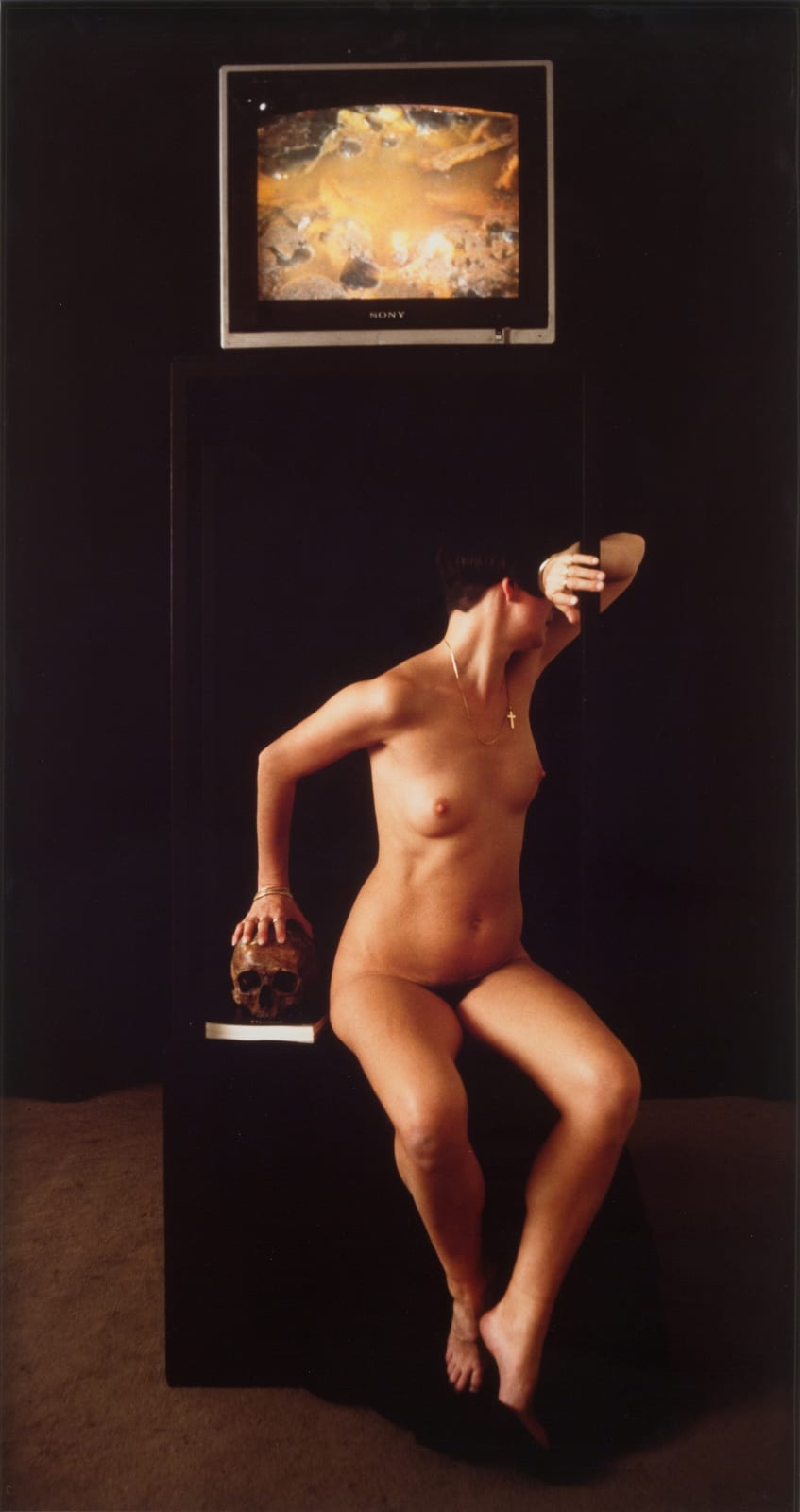Helen CHADWICK Ruin, 1986 Cibachrome photograph 91.5 x 46 cm