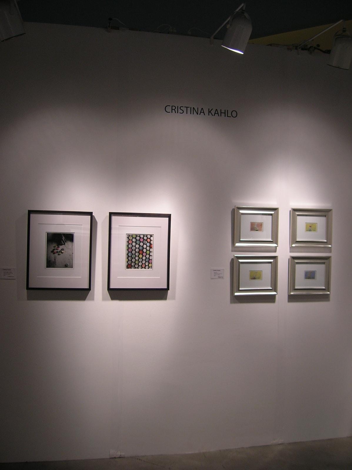 Arteamericas Art Fair 2009