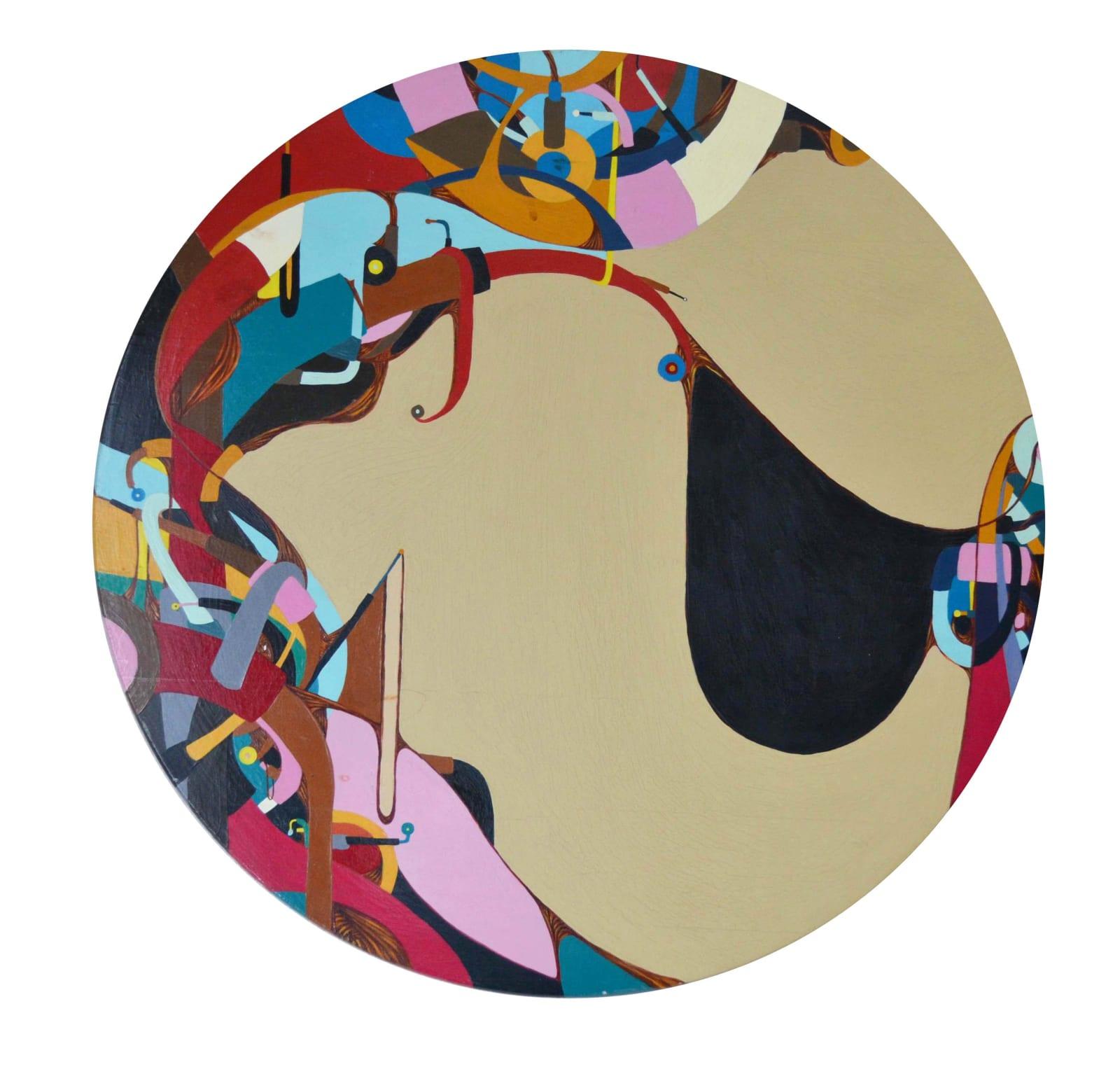 Fernando Andrade Circulo de Colores, 2007