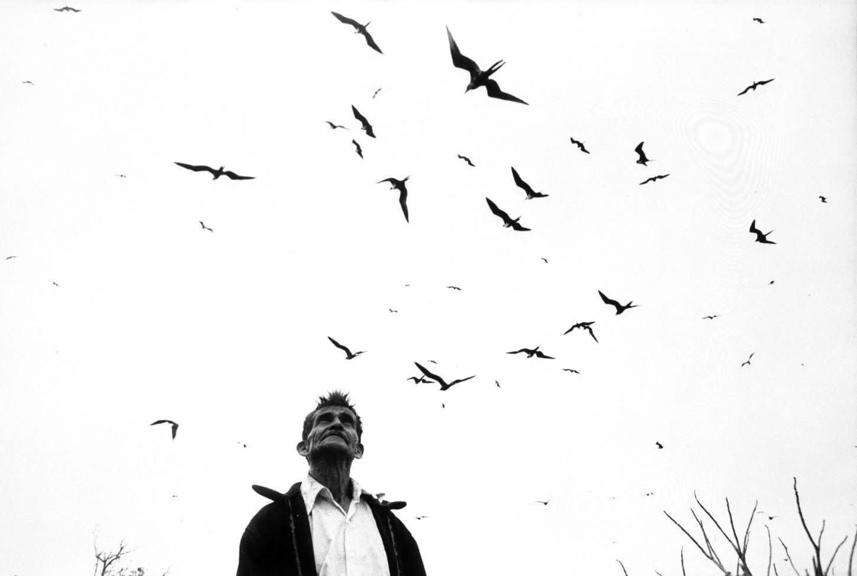 Graciela Iturbide El señor de los pájaros Nayarit, México, 1984