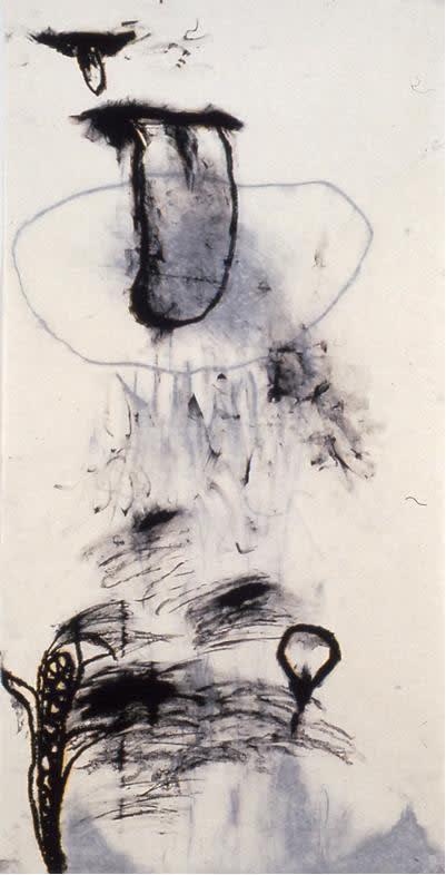 Laura Anderson Barbata Fresh Water, 1996
