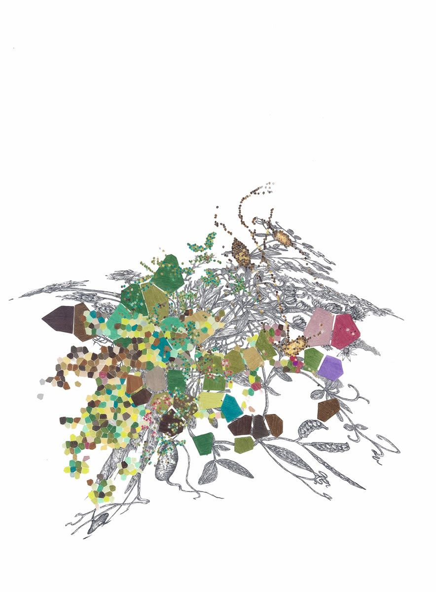Leigh Anne Lester Lathlavasempdactyrusndulerviyloravumhiza tubestoetectmacurosuchasorumlatas L., 2013, Graphite and color pencil on drafting film, 21.5 x 18