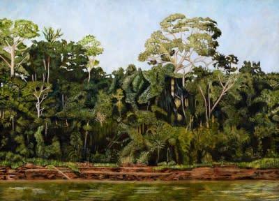 Pedro Diego Alvarado-Rivera Selva Amazonica, 2012