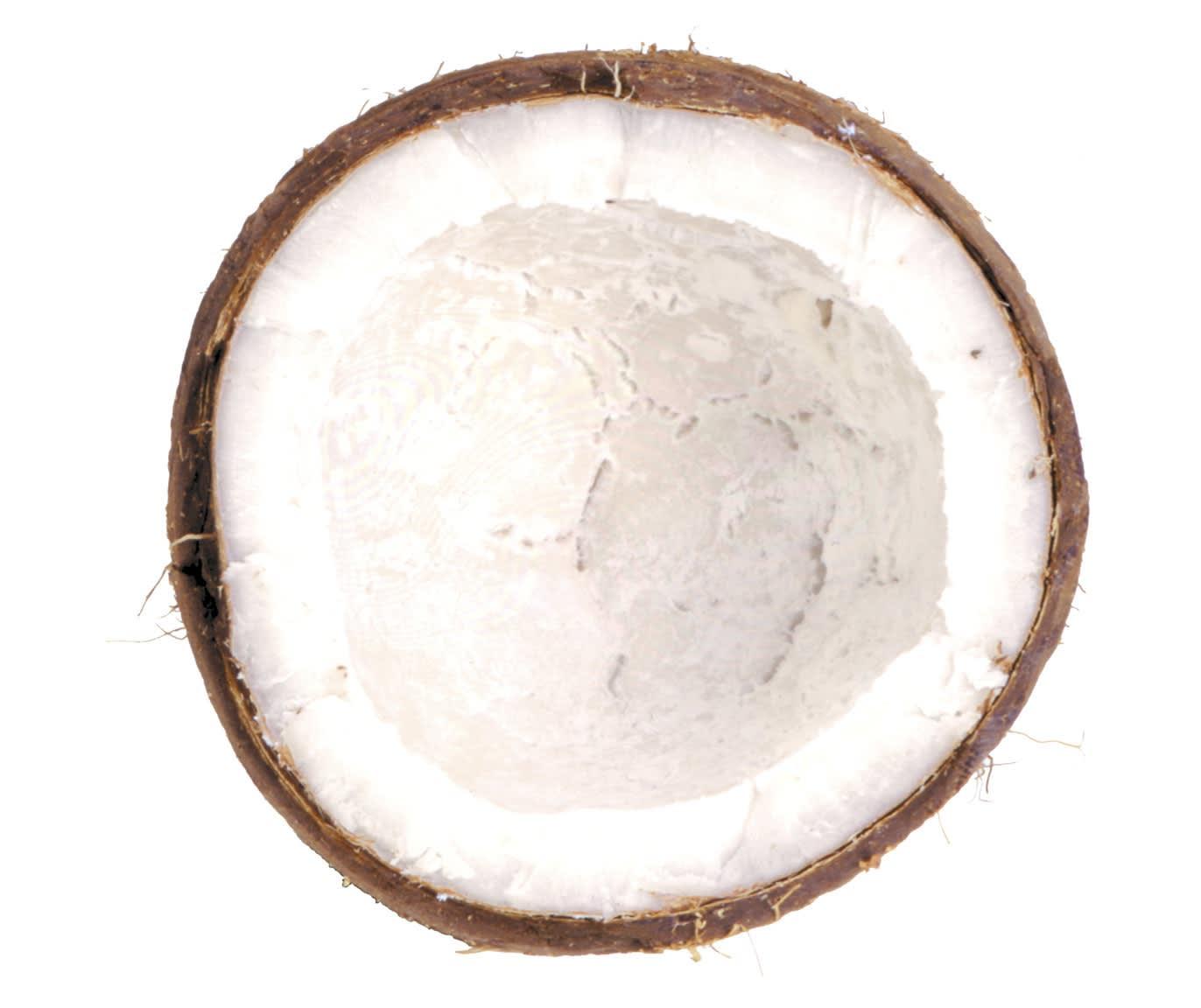 Chuck Ramirez Coconut: White Coconut, 1997, 2002