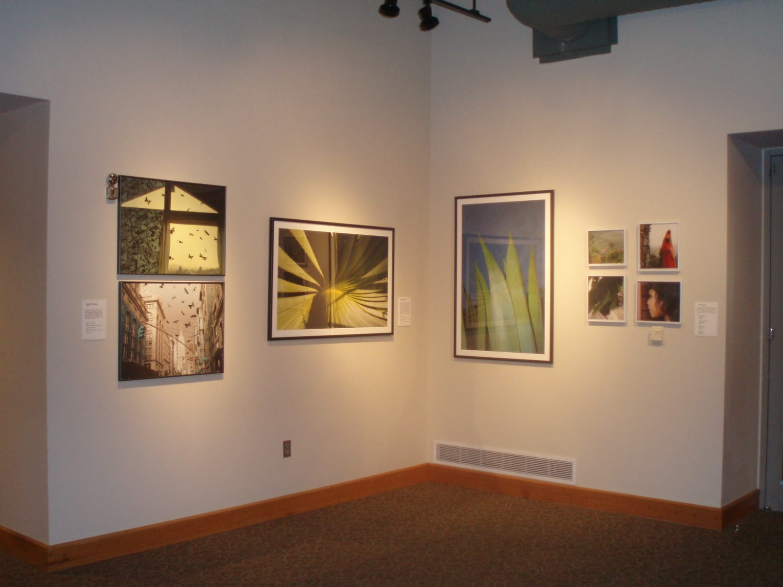 International Exposure: Looking at Contemporary Photography