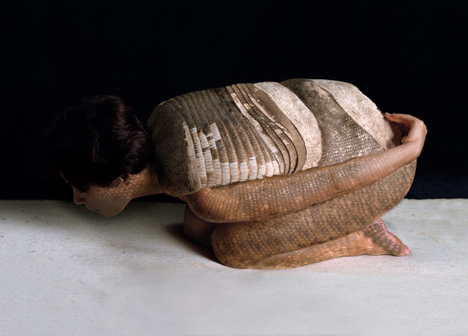 Cecilia Paredes Armadillo, 2002