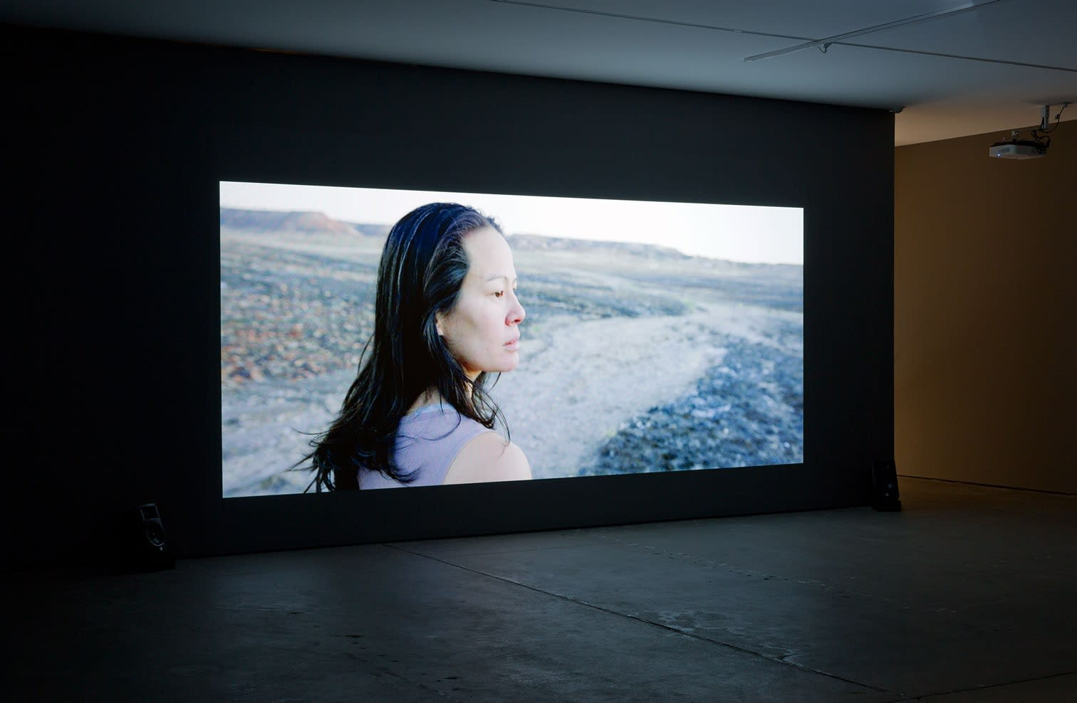 Cate Consandine, A Woman of the Future, 2016