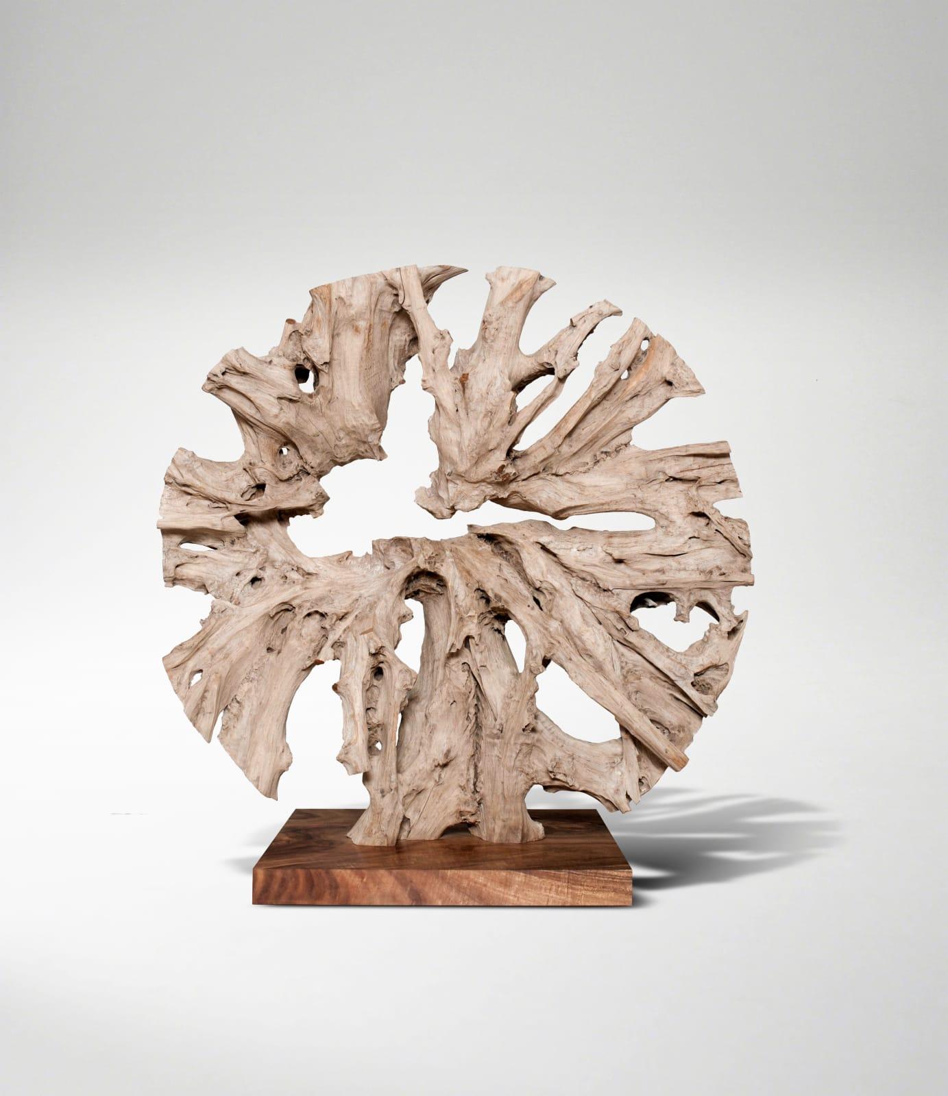 Monumental Circular Sculpture, 2018 Signed JAS Teak root on separate plinth