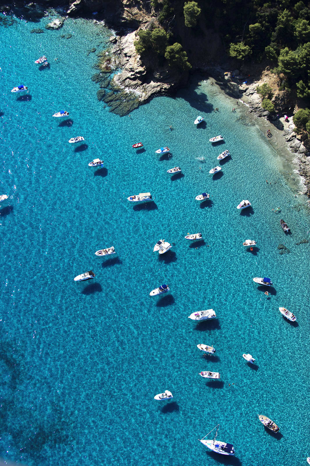 Boats in Cove