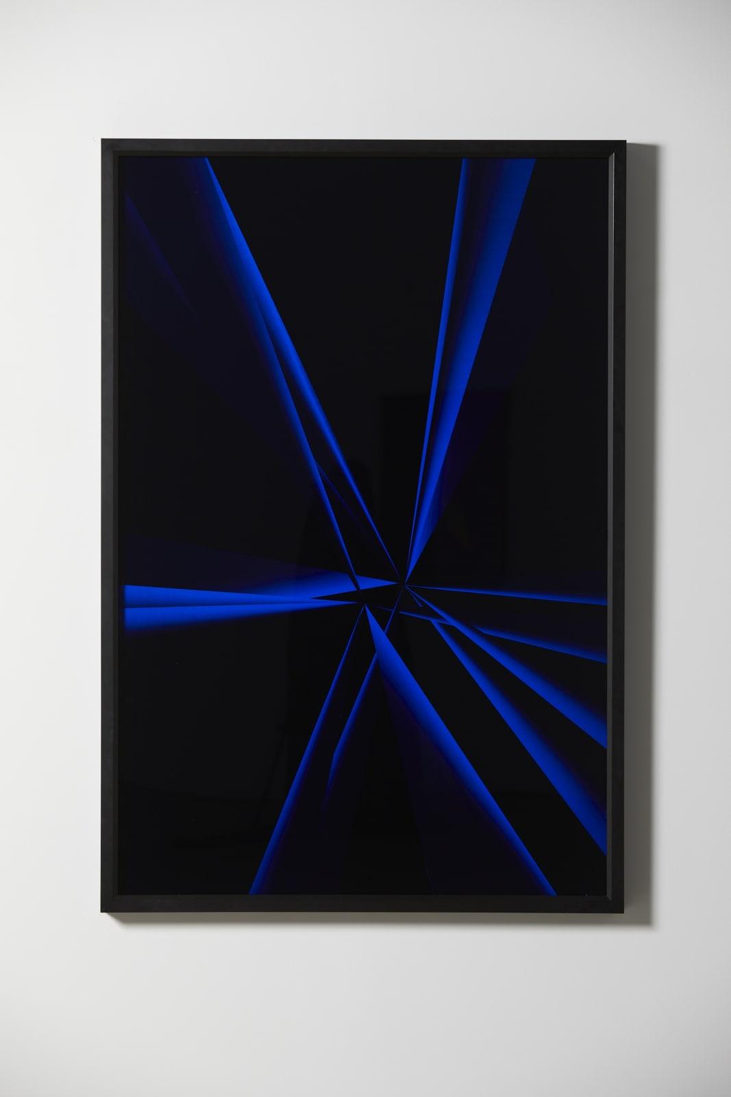Blue Iris, 2020