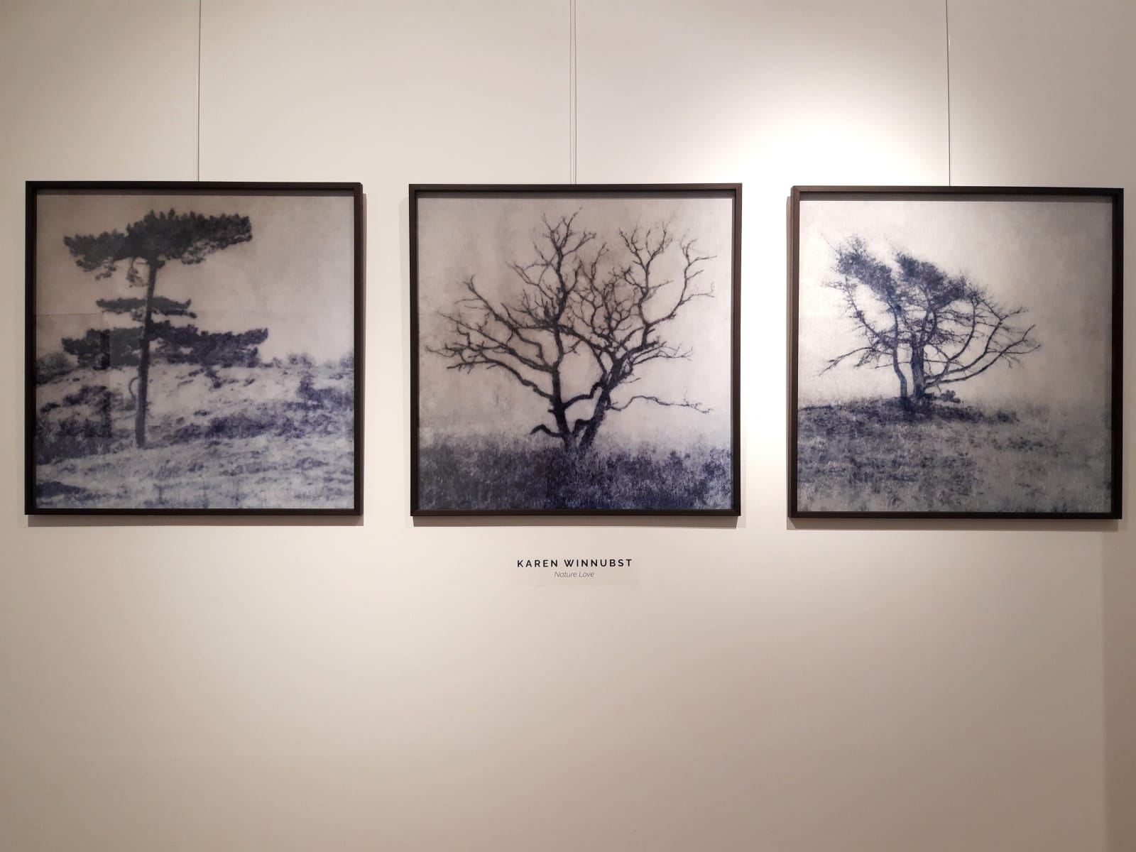 Affordable Art Selection of Photography in Haarlem