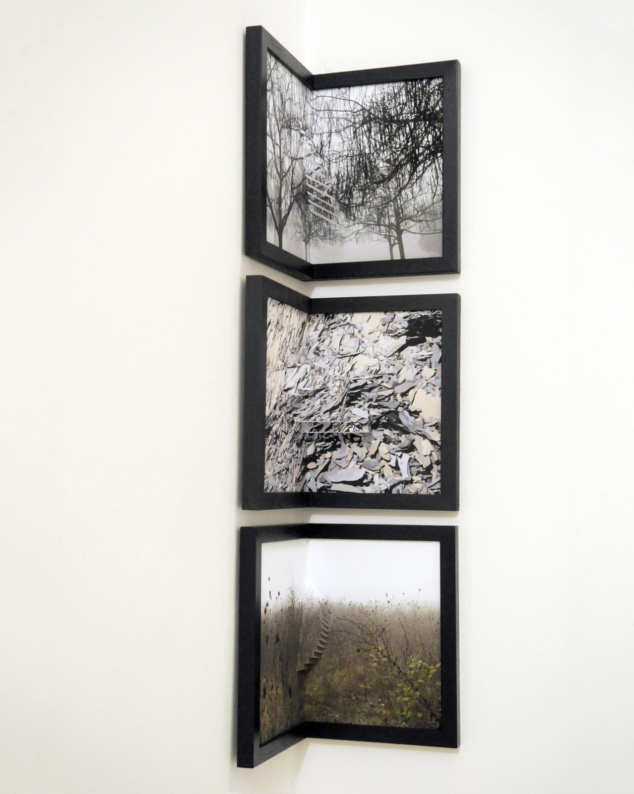 Silvia Camporesi Where all become, 2012 Installation view