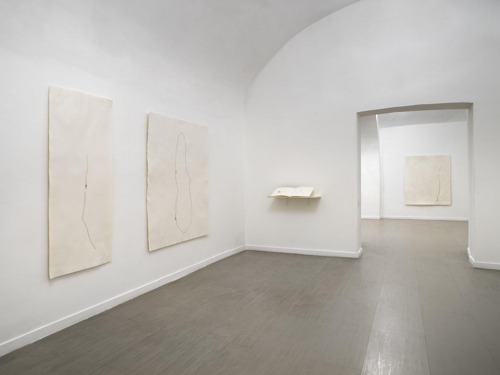 Beatrice Pediconi Nude curated by Cecilia Canziani installation view of the second and third room ph. Dario Lasagni
