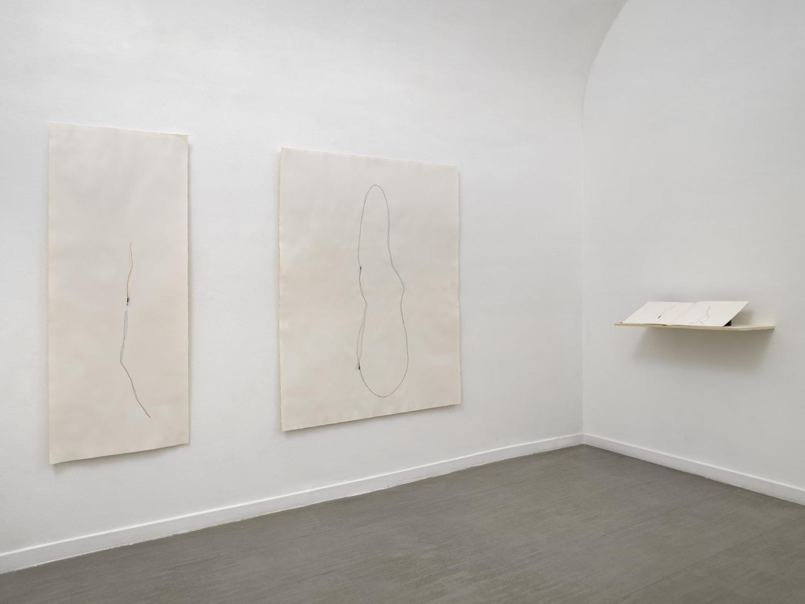 Beatrice Pediconi Nude curated by Cecilia Canziani installation view of the second room ph. Dario Lasagni