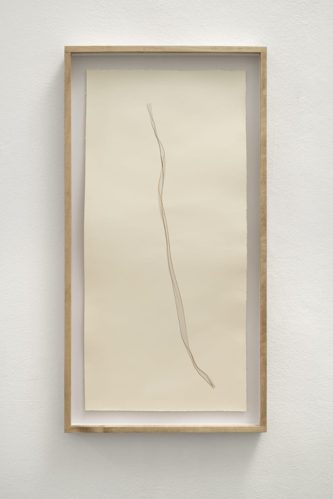 Beatrice Pediconi Untitled Small #12, 2020 Emulsion lift on paper cm 66x30, with frame and glass cm 73 x 38