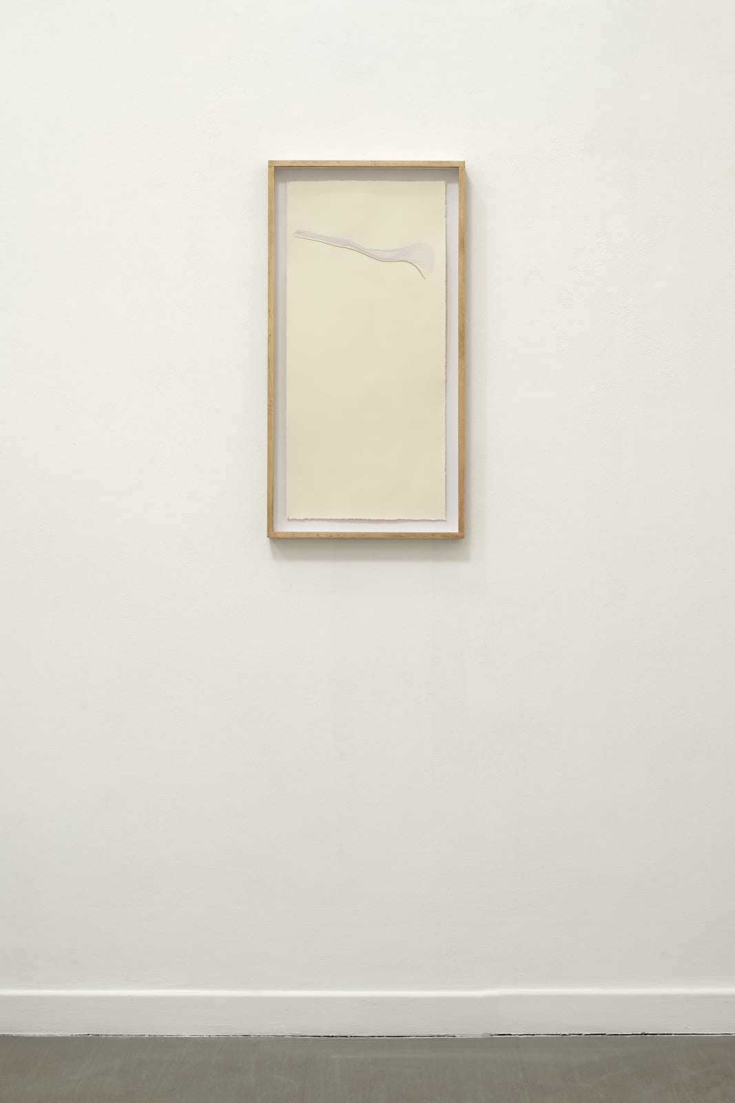 Beatrice Pediconi Untitled Small #2, 2020 Emulsion lift on paper cm 66x30, with frame and glass cm 73x38