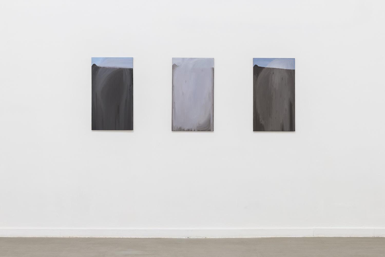 Verticale terra Fabrizio Prevedello / Michele Tocca Curated by Davide Ferri Installation view of the third room Ph. Sebastiano Luciano