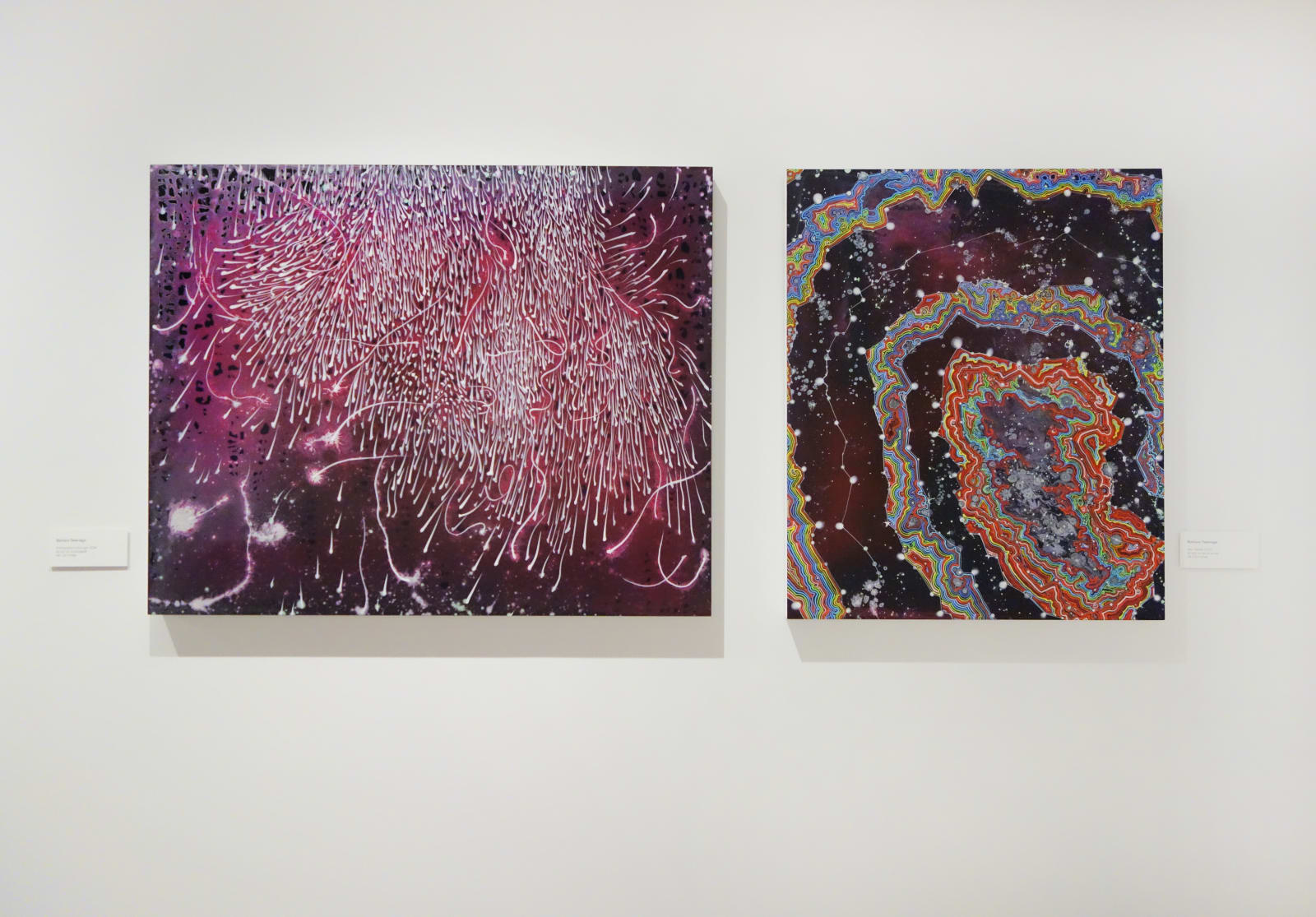 Installation view: Painted is Not Doomed To Repeat Itself