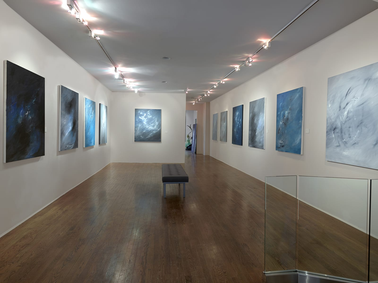 Installation view: Lisa Bradley: The Fullness of Being