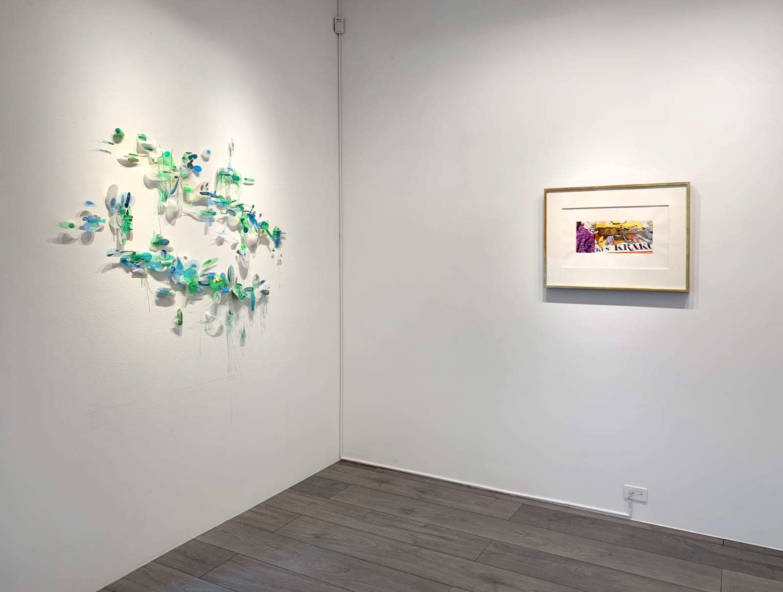Installation view: Remnant Romance, Environmental Works: Idelle Weber and Aurora Robson