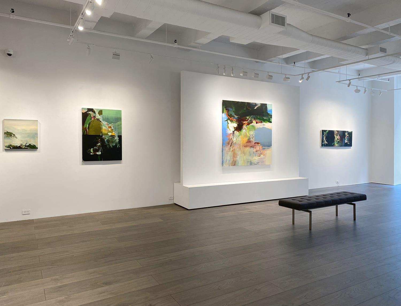 Installation view: Hollis Heichemer: Entanglement